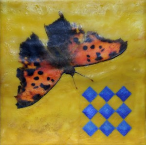 Butterflies are Blue1
